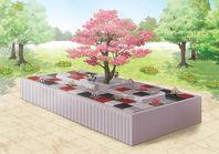 樹木葬見学会開催について